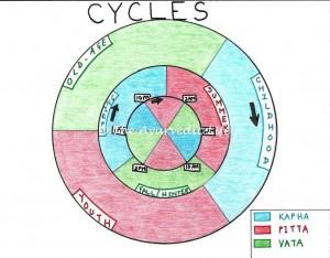 cycles2-300x2341.jpg